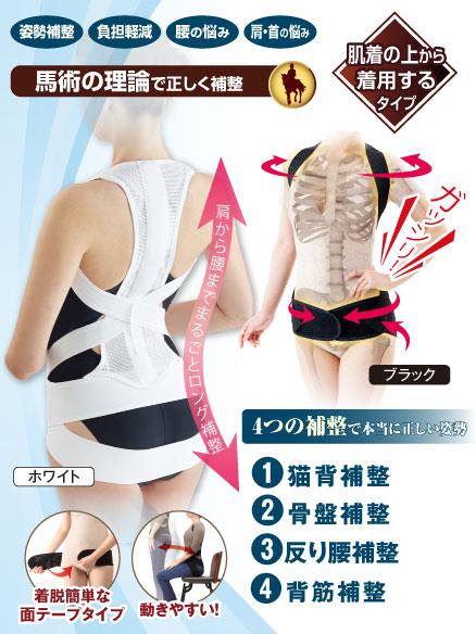 写真:【販売終了】馬術師の腰から支える姿勢ベルト